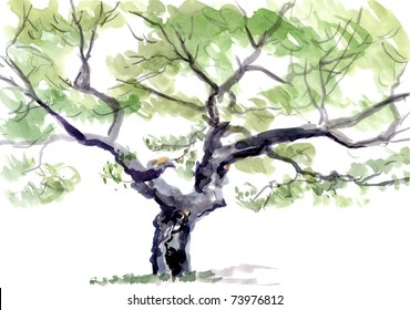 tree, watercolor