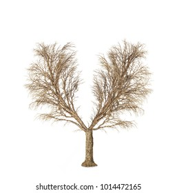 The tree without leaves have a shape of human lungs  isolated on a white background