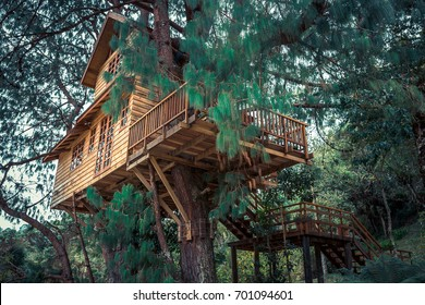 image about Diorama Backgrounds Free Printable named Treehouse Illustrations or photos, Inventory Pictures Vectors Shutterstock