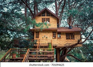 Treehouse./ Treehouse./ Treehouse.
