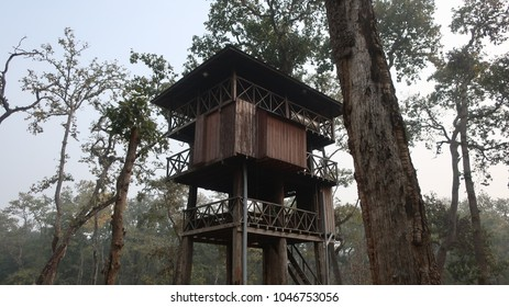 Treehouse in Chitwan, Nepal