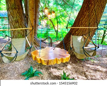 Treehouse hammock swings and wooden hanging coffee table slab with warm outdoor lights create a beautiful summer retreat in the green forest for couples and the family.