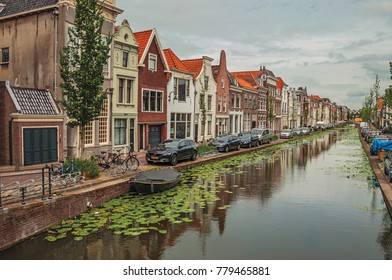 Tree-lined long canal with aquatic greenish plants, brick houses on its bank and cloudy day at Gouda. Very popular day trip destination, is famous for its tasty Gouda cheese. Southern Netherlands.