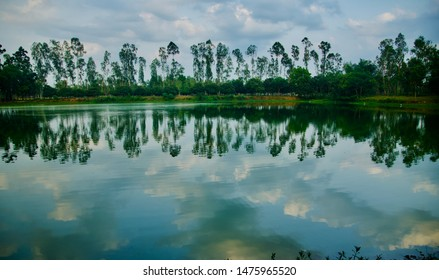 Trees around a lake area with reflection in water