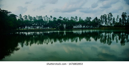 Trees around a lakeshore area with reflection in water