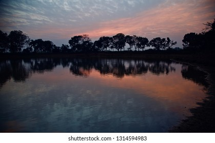 Trees around a lakeshore with reflection in water in the afternoon