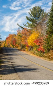 Trees in autumn colors along the road, near Saint-Jerome, Laurentides.