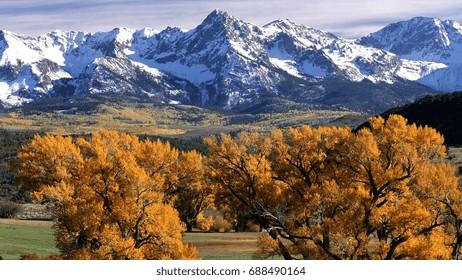 trees autumn crones yellow mountains tops colorado