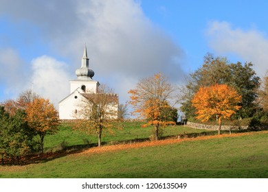 Trees with autumn leaves. Church in background