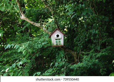 Trees and birdhouse