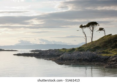 Trees by bay at Arisaig looking west toward the island of Skye, Scotland, midsummer
