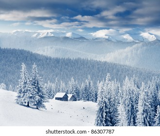 Trees covered with hoarfrost and snow in mountains. Mountain building
