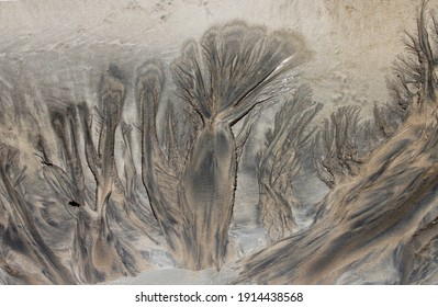 trees - drawing in the sand at low tide created by sea water