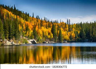 Trees with Fall foliage at Bear Lake in Rocky Mountain National Park
