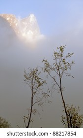 Trees in the fog on the background of the mountain peak - Nepal, Himalayas