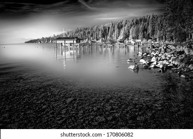 Trees in a forest at the lakeside, Carnelian Bay, Lake Tahoe, California, USA