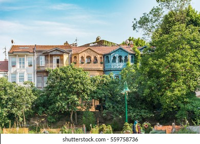 Trees in front of Beautiful colorful houses - Kuzguncuk - Istanbul - Turkey