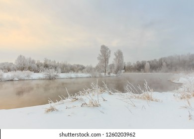 trees and grass in the frost by the river in winter