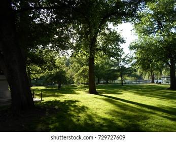 Trees, grass and lagoon, Boston Public Garden, Boston, Massachusetts, USA