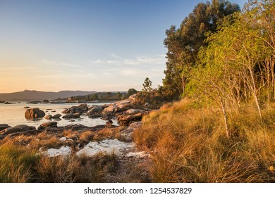 Trees, grass and rocks on Illa de Arousa coastline at hight tide
