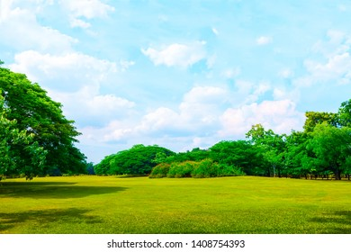 Trees and green grass with blue sky and clouds. Nature background.