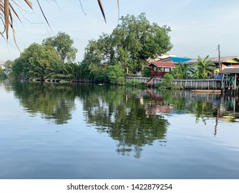 trees grow nearby canal shore and old wooden house as homestay