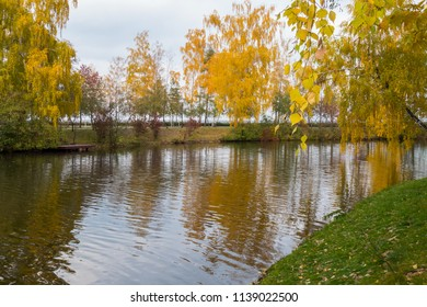 Trees growing along the banks of the reservoir have already dressed their autumn yellow outfits. Reflected in water with shallow ripples on the surface.