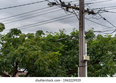 Trees growing around power lines is a hazard