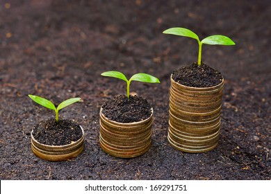 trees growing on coins / csr / sustainable development / economic growth /  trees growing on stack of coins / corporate social responsibility