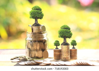 Trees growing on coins money and glass bottle on green background, investment and business concept