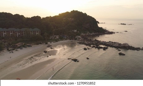 Trees growing on a rock surrounded by sea on sunset sky background. Shot. Cliff covered by green trees on wonderful seascape background.