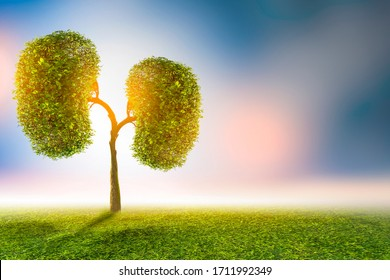 Trees (kidneys), 3D environmental and medical concepts