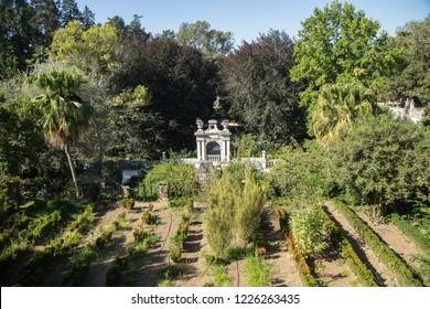 Trees and landscape of Jardim da Sereia Park in Coimbra near Coimbra university