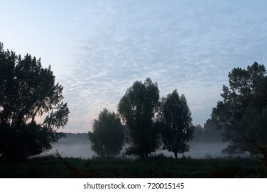 Trees at large water pond in backlight on the early morning, The Netherlands