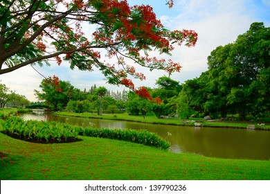 Trees and lawn near a small pond in Thailand