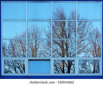 trees lit by the setting sun and reflected in the windows of a large sports complex