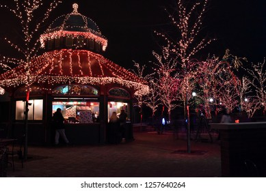 trees lit up for zoo lights, Concession Stand and Trees illuminated with Christmas Lights at Zoo Lights, Lincoln Park Zoo, Chicago, IL December 13th, 2017