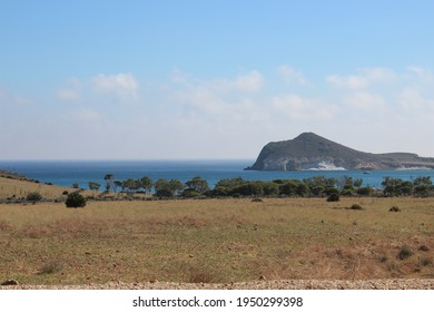 Trees, mediterran sea and mountains in almeria (spain).