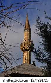 trees and mosque minaret istanbul turkey 2018