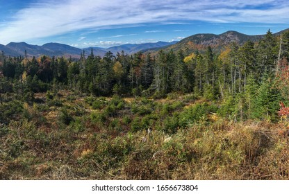 Trees and mountains - White Mountains - New Hampshire