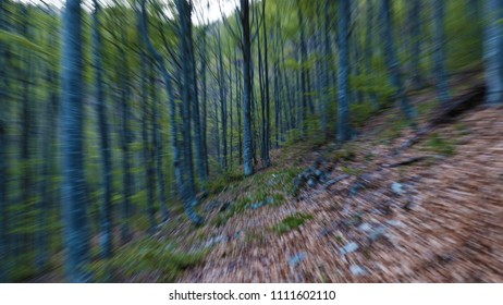 Trees in movement effect