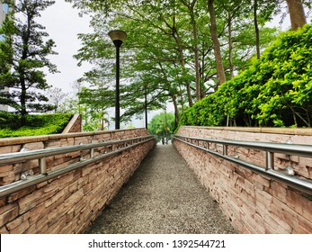 Trees on both sides of the walkway-Wheelchair Ramp
