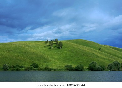 Trees on a green hill near the water and the sky on a sunny summer day