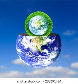 Trees on the lawn. Natural concept. Elements of this image furnished by NASA.