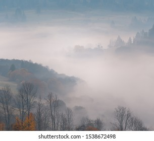 Trees on the mountain hills through the morning fog at beautiful autumn foggy sunrise.