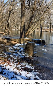 Trees on the Tippecanoe River Waterway in the winter in Indiana