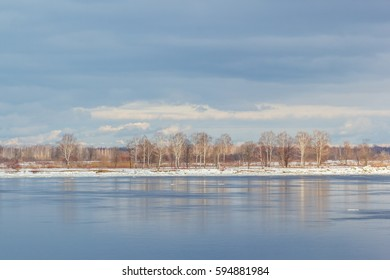 Trees on the Volga River at Spring