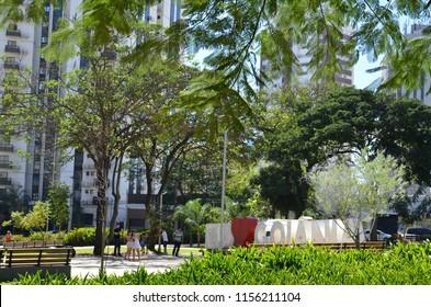 Trees in the park in Goiania Goias Brazil