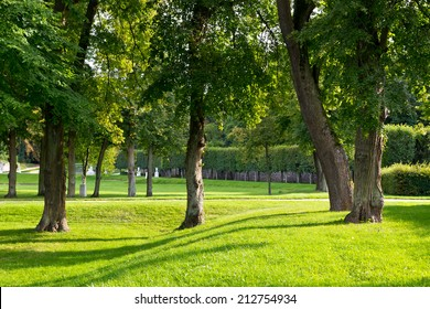 Trees in a park in Marly, France.