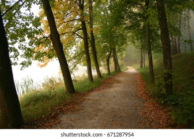 Trees path in autumn foggy morning on the lake - Shutterstock ID 671287954